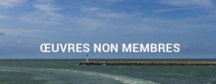 image-oeuvres-non-membres-1